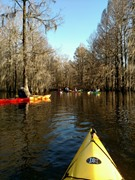 Santee 2 Hour Kayak Tour