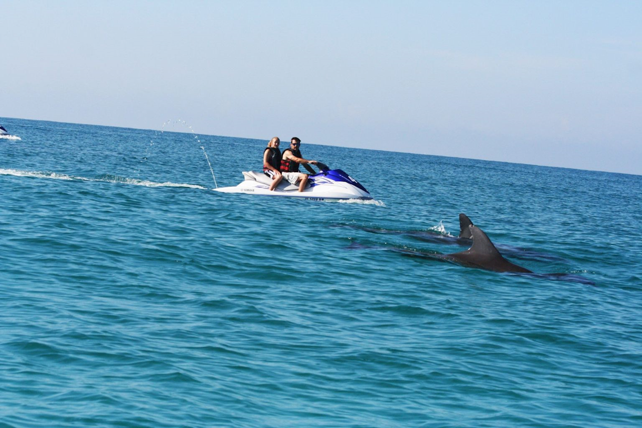 Dolphin Excursion on Waverunners