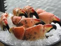 Stone Crab Claw Electric Bike Tours