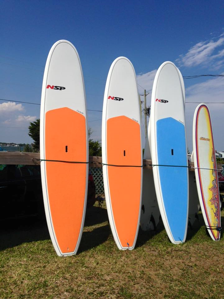 Daily Paddle Board Rental