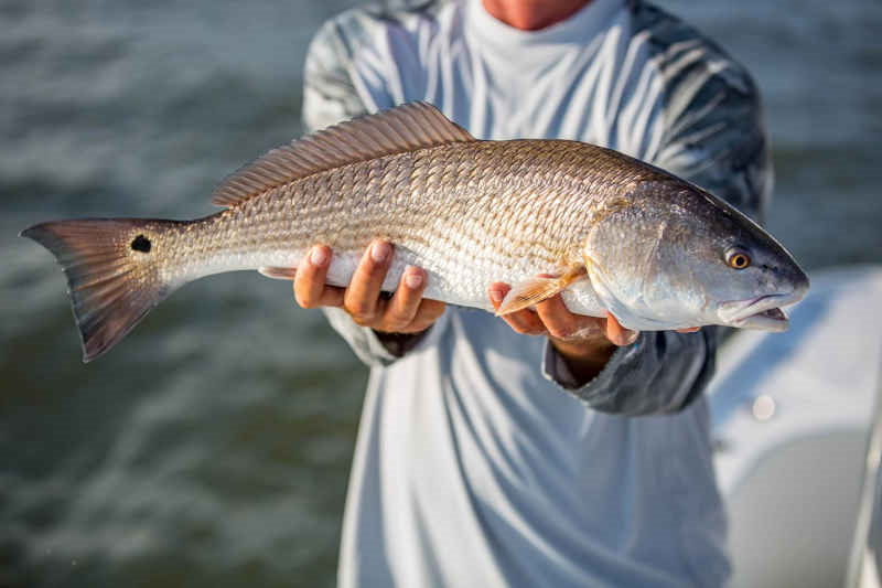 6 Hour Inshore Fishing Charter