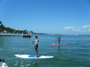 Captiva Eco Paddleboard Tours