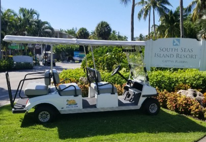 6 Passenger Golf Cart Rentals